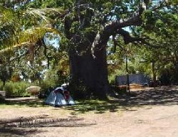 Vilanculos Self Catering - Baobab Beach